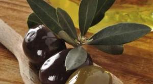 olio-extravergine-d-oliva-bio