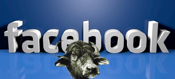 social facebook-bufale-web
